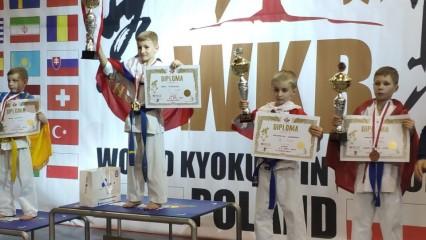 Obrazek galerii Mistrzostwa Europy w Karate